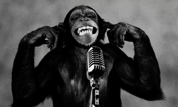Funny-Monkey-Singing-Wallpaper-Android[1]